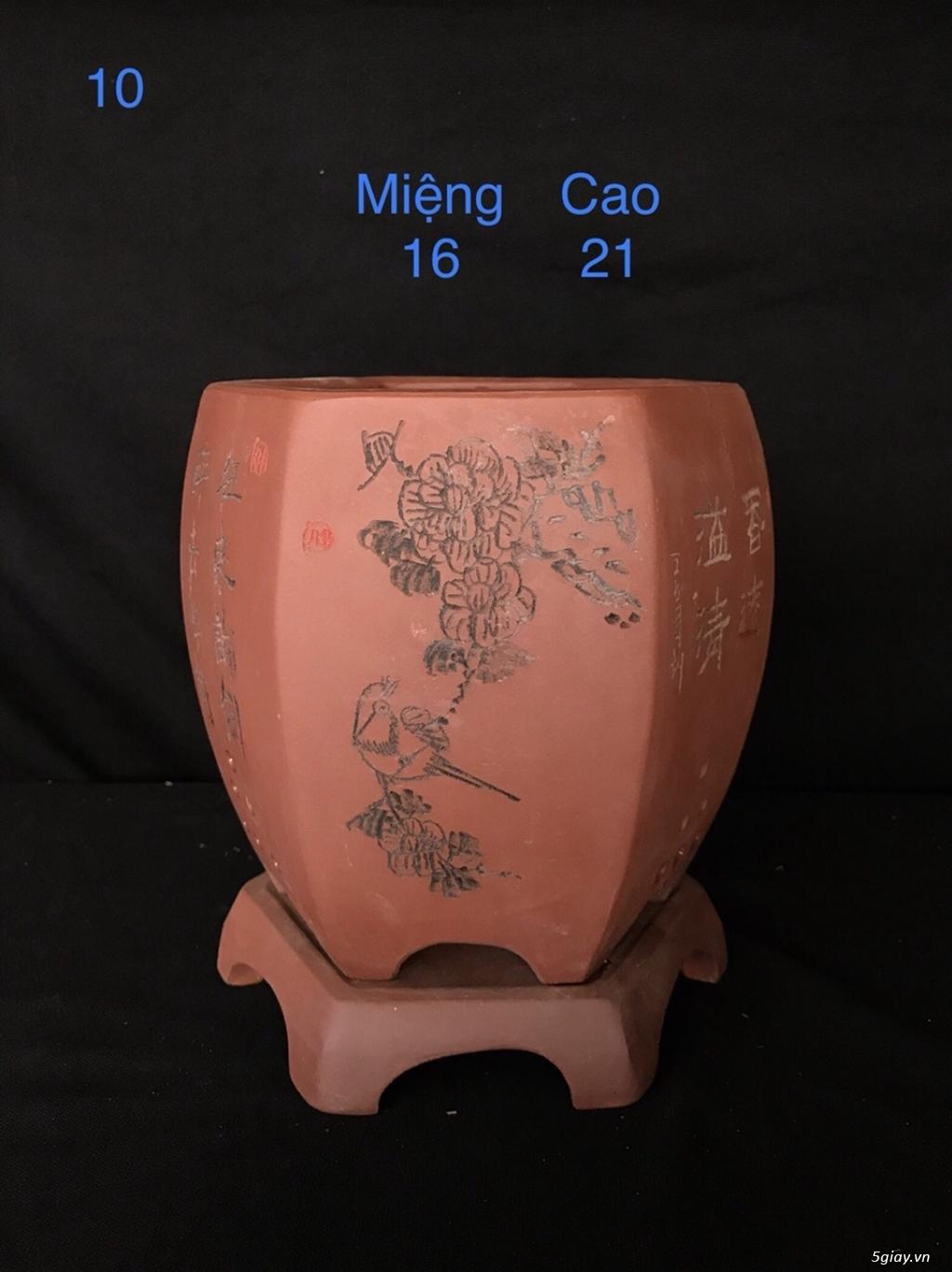 Chậu cây bonsai nhập khẩu, đẹp, có giá sỉ và lẻ cho a/e, 0962118575 - 7