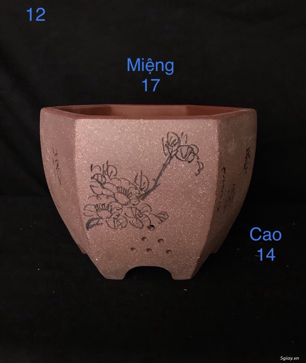 Chậu cây bonsai nhập khẩu, đẹp, có giá sỉ và lẻ cho a/e, 0962118575 - 9