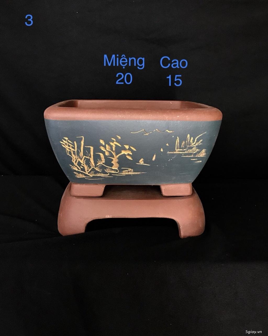 Chậu cây bonsai nhập khẩu, đẹp, có giá sỉ và lẻ cho a/e, 0962118575