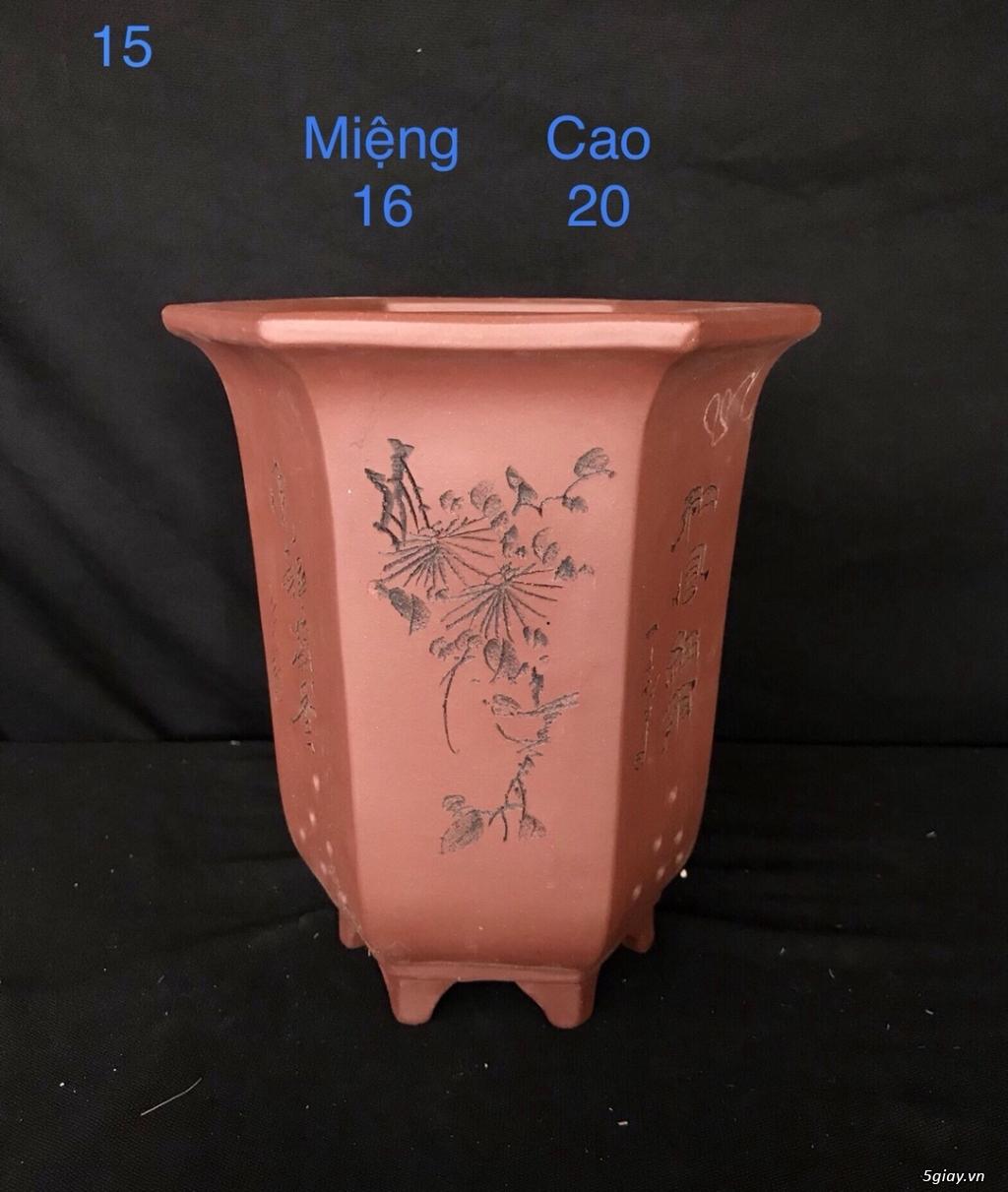 Chậu cây bonsai nhập khẩu, đẹp, có giá sỉ và lẻ cho a/e, 0962118575 - 12
