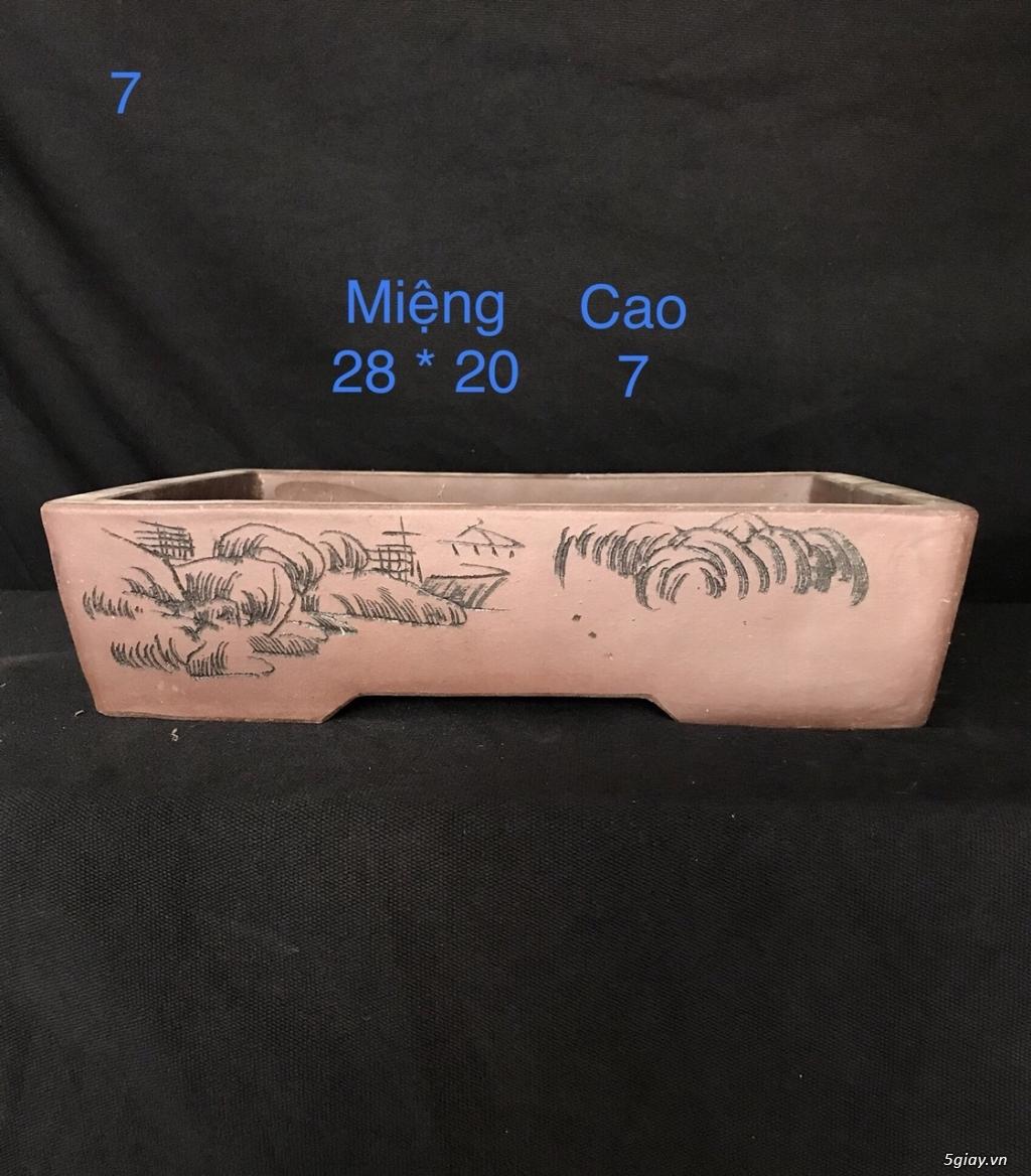 Chậu cây bonsai nhập khẩu, đẹp, có giá sỉ và lẻ cho a/e, 0962118575 - 3