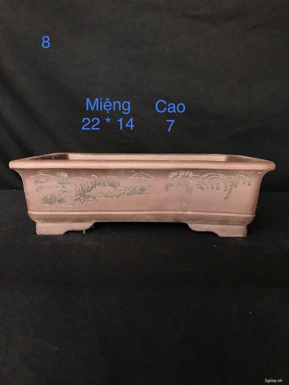 Chậu cây bonsai nhập khẩu, đẹp, có giá sỉ và lẻ cho a/e, 0962118575 - 5