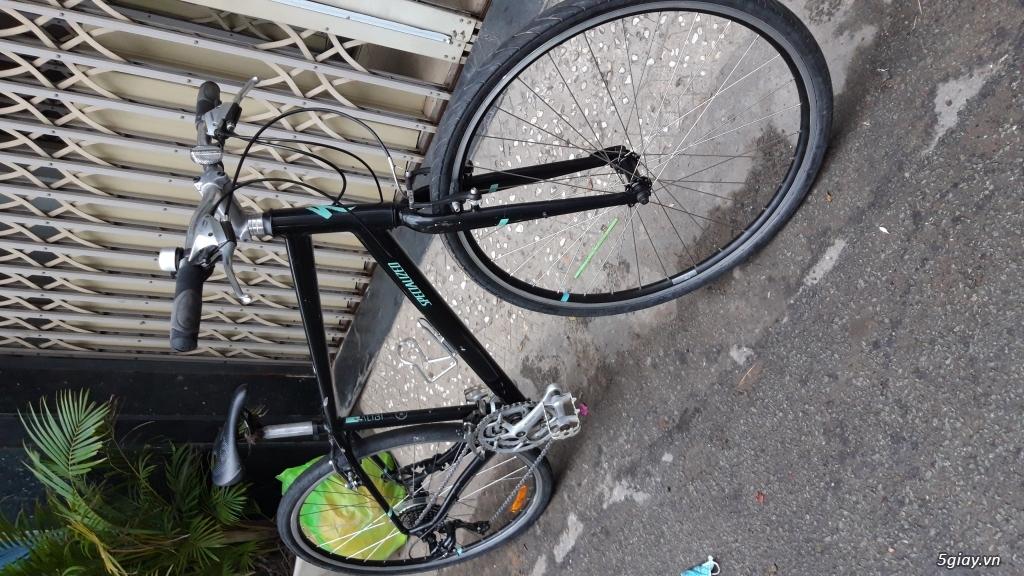Xe đạp  ROAD cao cấp PROGRESSIVE - 19