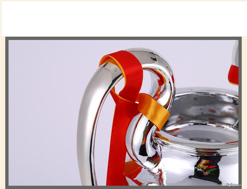 Chuyên Mô hình Cúp C1, Cup Thế giới, cup châu âu ( EURO) - 1