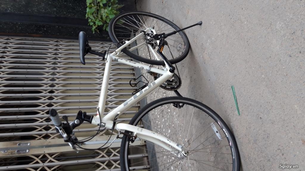 Xe đạp  ROAD cao cấp PROGRESSIVE - 17