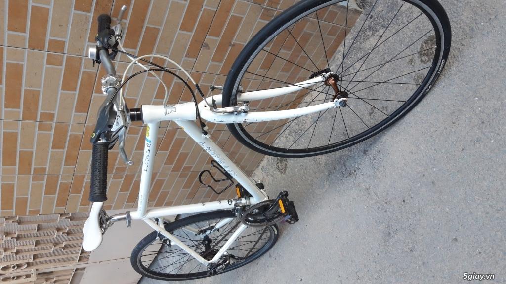 Xe đạp  ROAD cao cấp PROGRESSIVE - 9