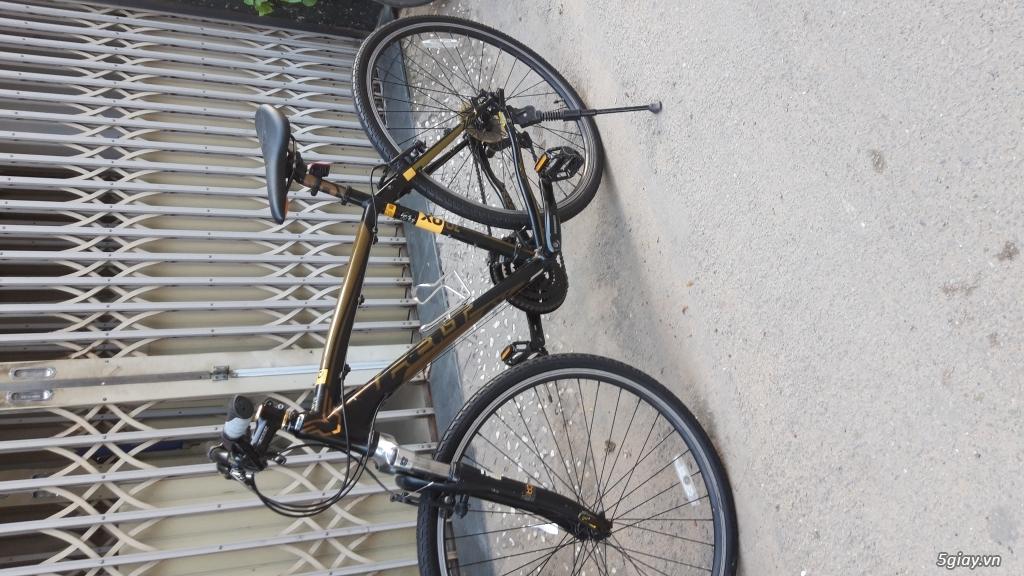 Xe đạp  ROAD cao cấp PROGRESSIVE - 7