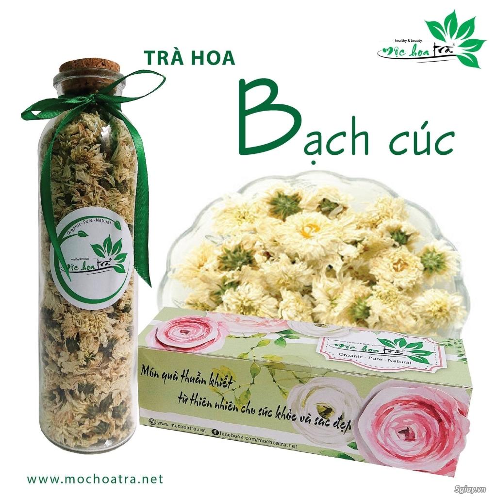 Trà hoa, trà thảo mộc Mộc Hoa Trà - Món quà thuần khiết từ thiên nhiên - 2