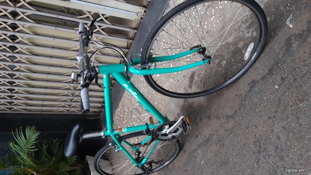 Xe đạp  ROAD cao cấp PROGRESSIVE - 15