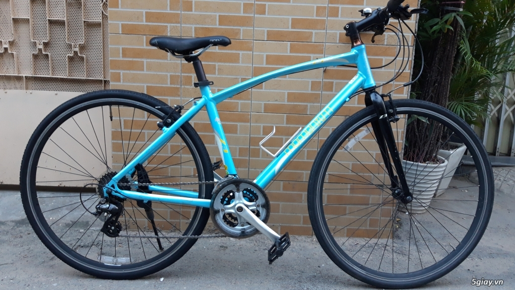 Xe đạp  ROAD cao cấp PROGRESSIVE - 2