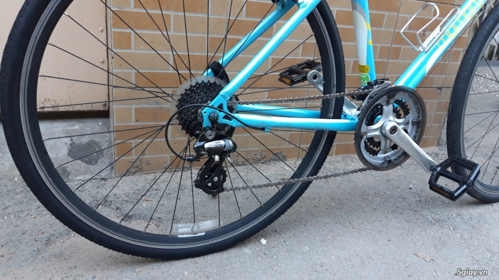 Xe đạp  ROAD cao cấp PROGRESSIVE - 5