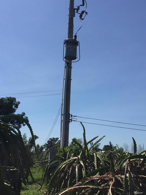 Bán đất trồng thanh long 9200m2, 1000 trụ thanh long. Bình Thuận