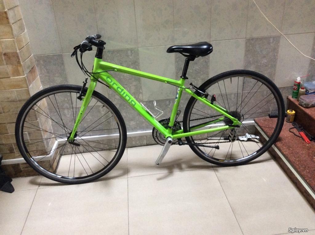 Xe đạp hàng bãi lấy từ Cam - 9