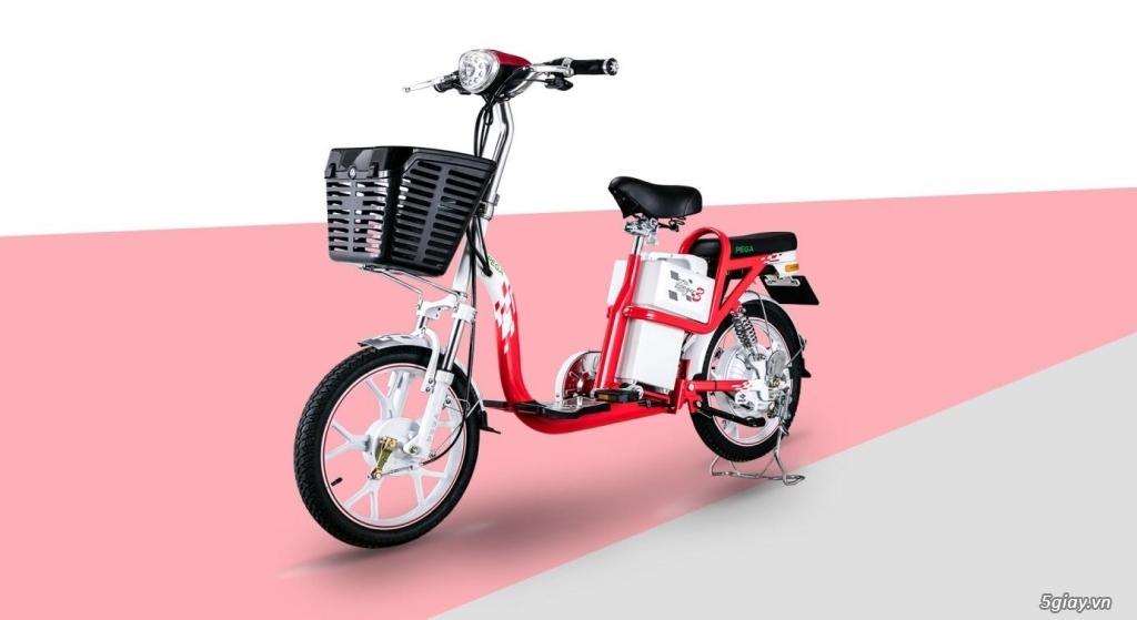 Góc Thanh lý: Xe đạp điện Pega chạy đi chợ, còn mới, còn BH giá 8.x