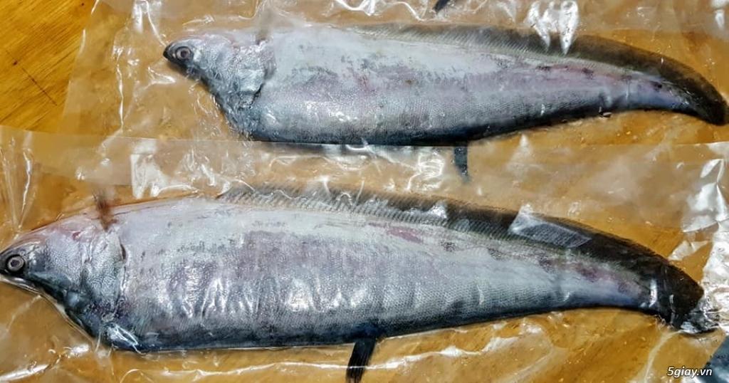 hải sản côn đảo chuyên cung cấp các loại khô cá - mực 1 nắng - 42