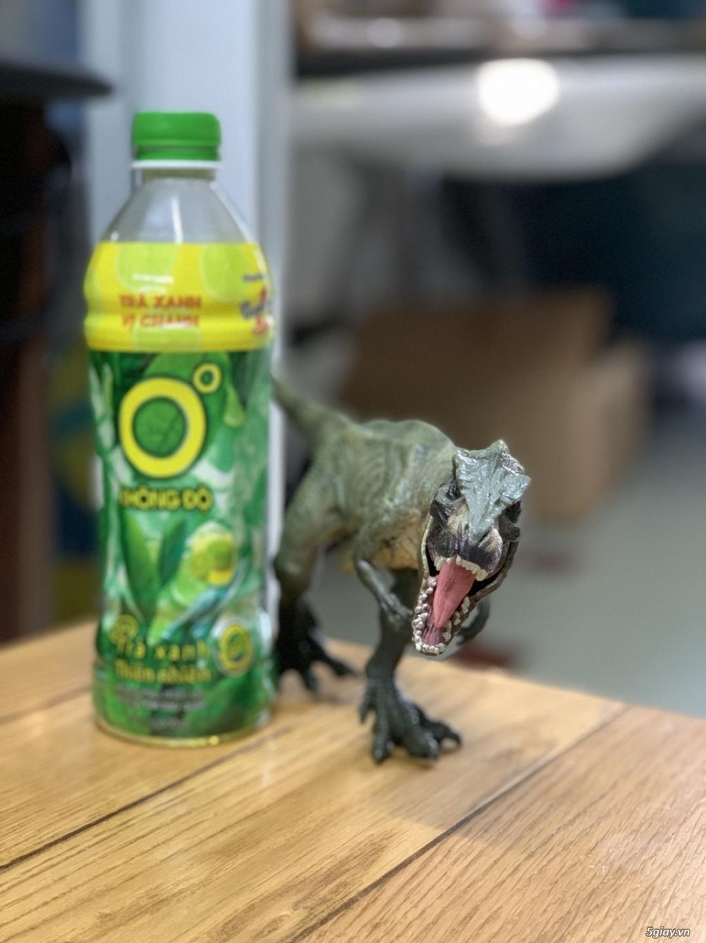 Mô hình thú - khủng long, cá sấu, voi,cọp........... - 1