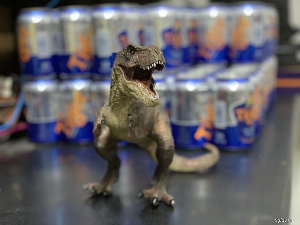 Mô hình thú - khủng long, cá sấu, voi,cọp........... - 13