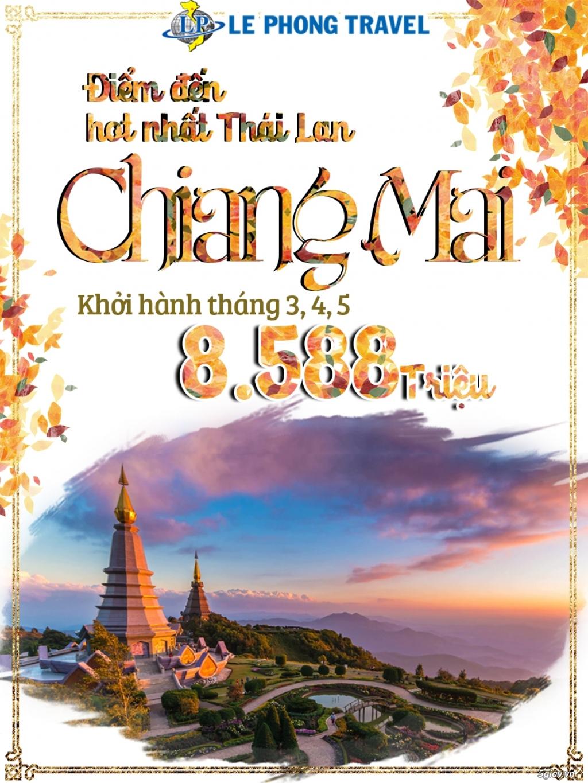 Tour Chiang Mai- Chiang Rai -  Đóa hồng phương Bắc Thái Lan
