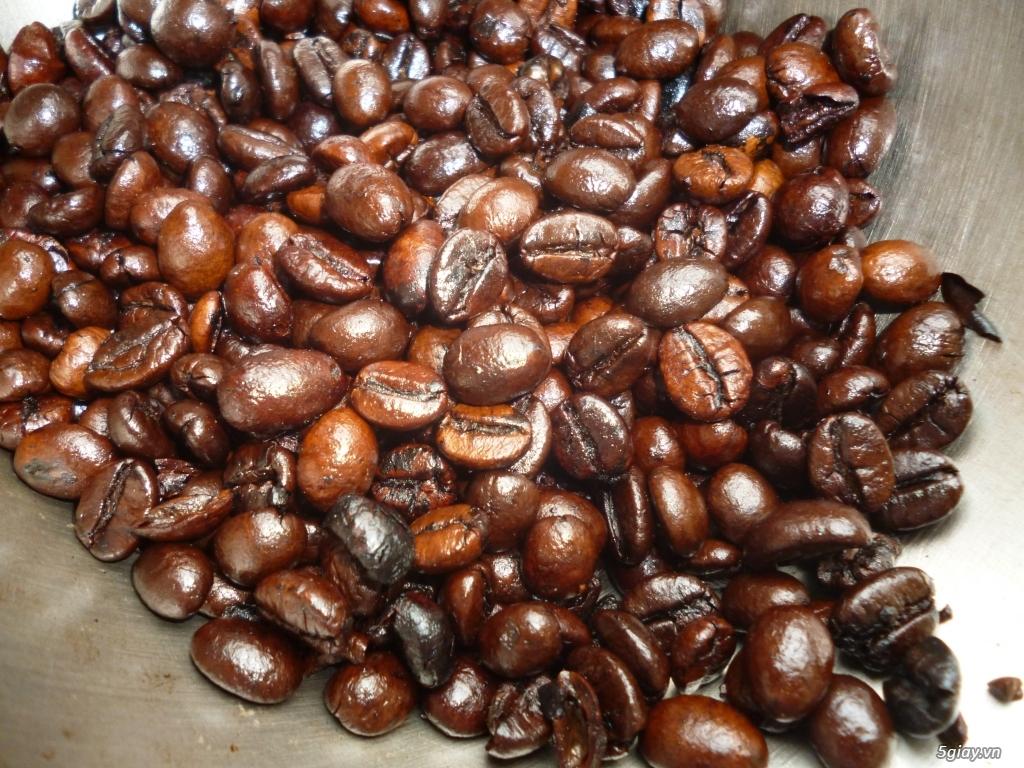 TP.HCM - Chuyên cung cấp cà phê sạch - Giá tốt nhất chỉ từ 80K/1kg - 1