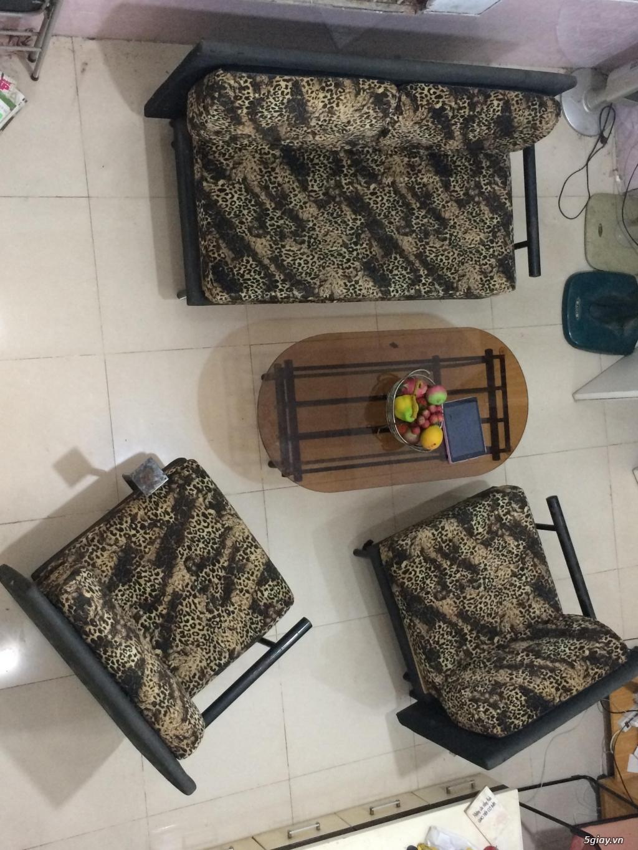 Đồ nội thất, gia dụng, bình phong thủy - 7