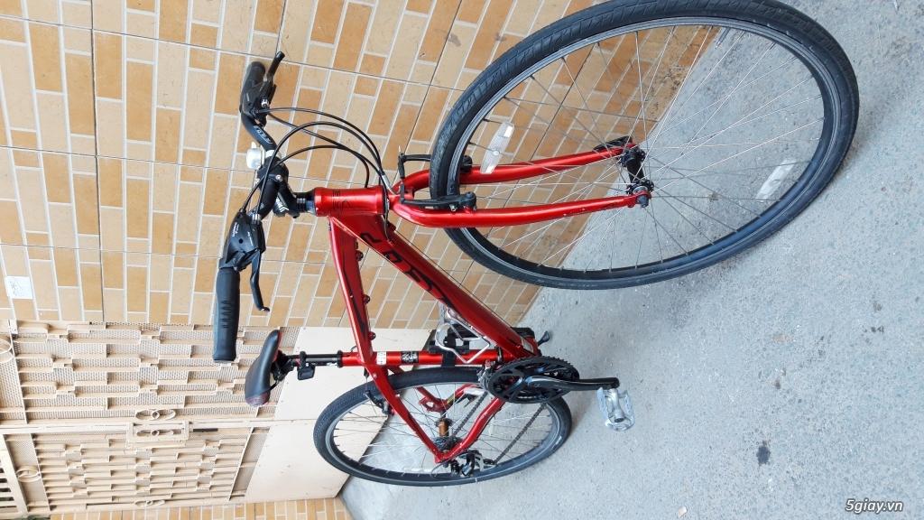 Xe đạp  ROAD cao cấp PROGRESSIVE - 14