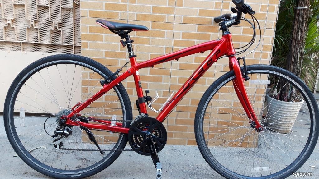 Xe đạp  ROAD cao cấp PROGRESSIVE - 12
