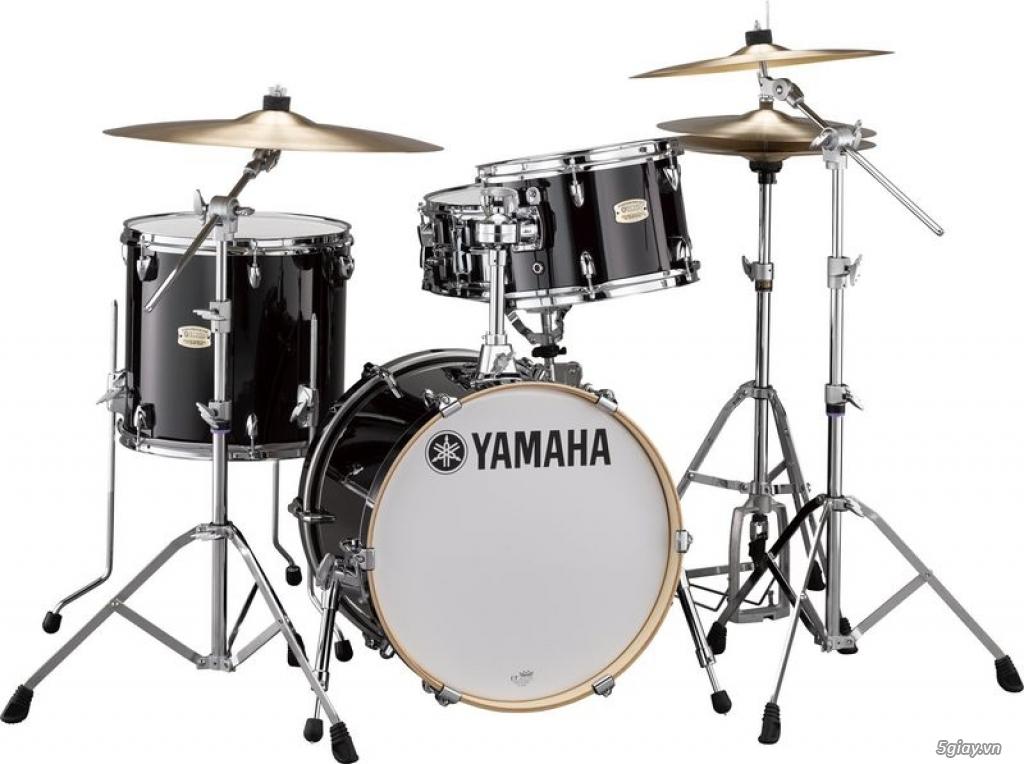 Bán trống jazz drum lazer - trống đánh tay giá rẻ tại hóc môn - 4