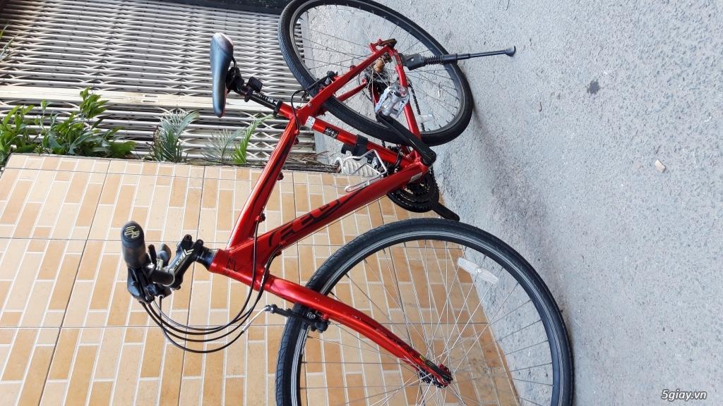 Xe đạp  ROAD cao cấp PROGRESSIVE - 16