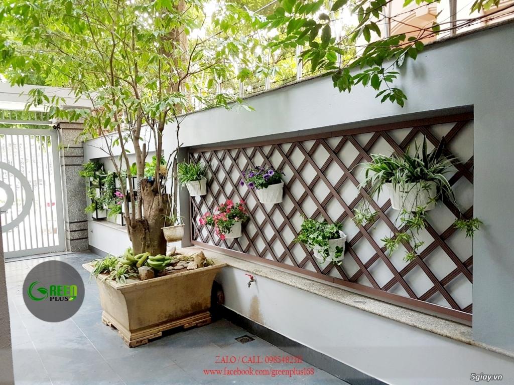Thiết kế, trang trí ban công, chậu hoa, cây cảnh - 3