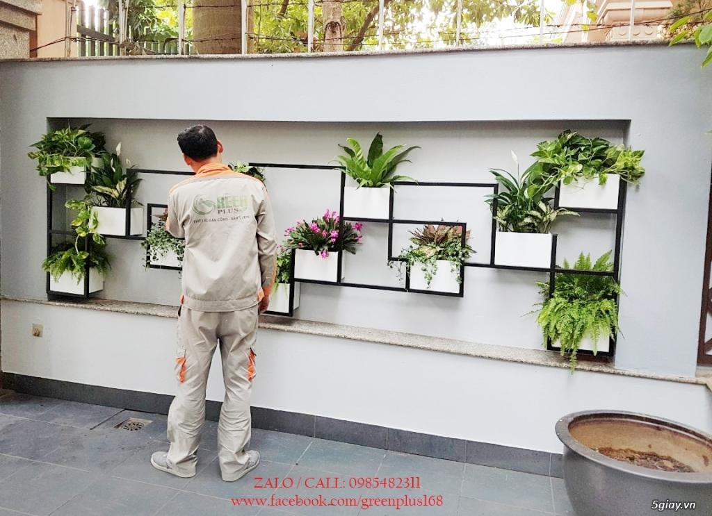 Thiết kế, trang trí ban công, chậu hoa, cây cảnh - 1