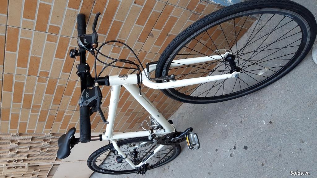 Xe đạp  ROAD cao cấp PROGRESSIVE - 10