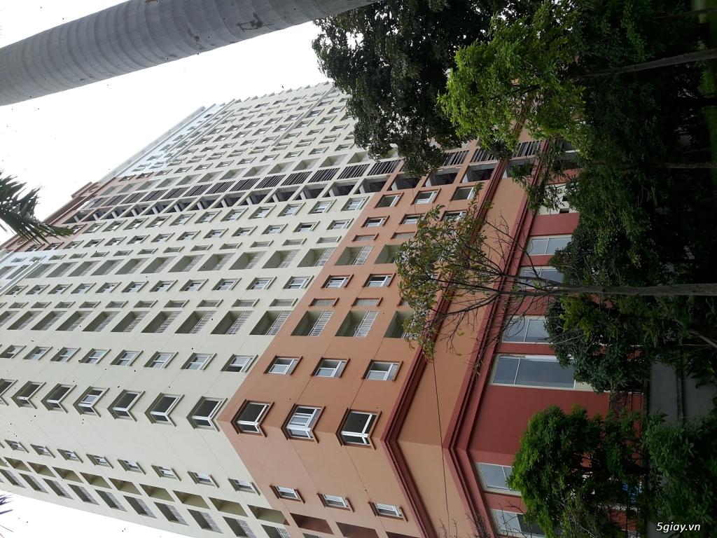 Cho thuê căn hộ mới xây sạch đẹp tầng thấp nhất nên an toàn view cafe - 2