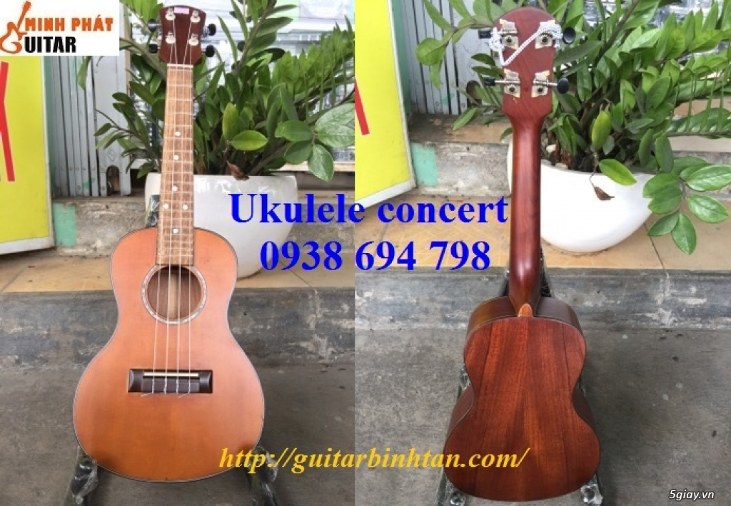 Đàn ukulele giá rẻ toàn quốc - ship COD toàn quốc - 14