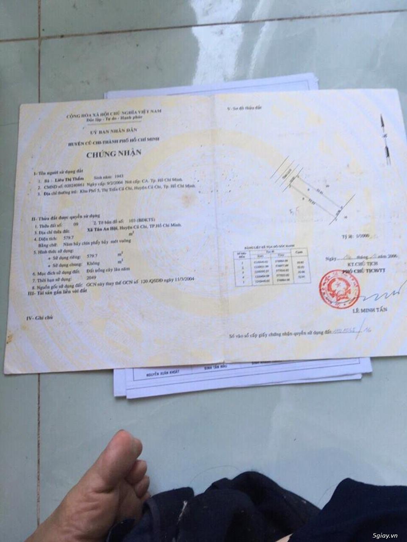Đất mặt tiền tỉnh lộ 8 - xã Tân An Hội Củ Chi - thích hợp đầu tư - 1