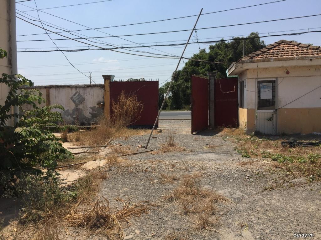 Bán nhà xưởng mặt tiền đường nhựa 12m - Tân An Hội Củ Chi ✅ Diện tích: - 3