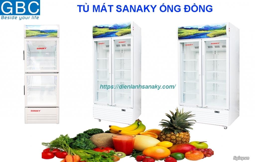 Bán tủ đông Sanaky 2 cánh dàn lạnh đồng