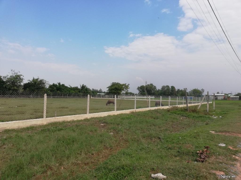 Cần bán đất Hóc Môn, Xã Tân Hiệp , diện tích 1517,0 mét - 7
