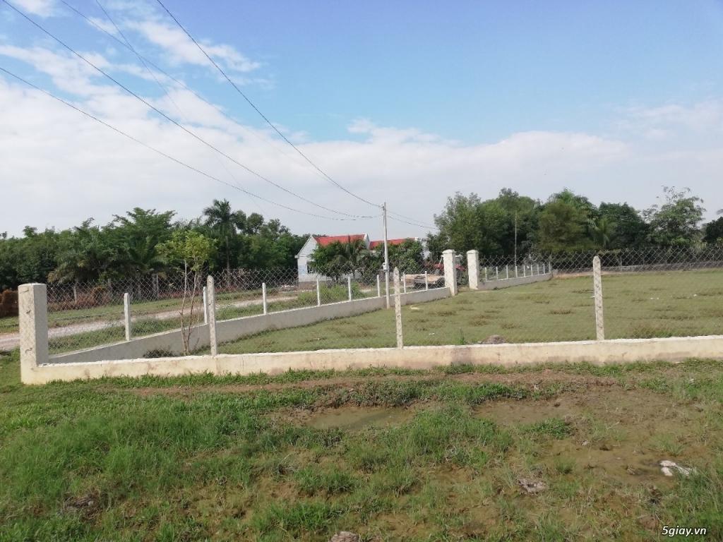 Cần bán đất Hóc Môn, Xã Tân Hiệp , diện tích 1517,0 mét - 6