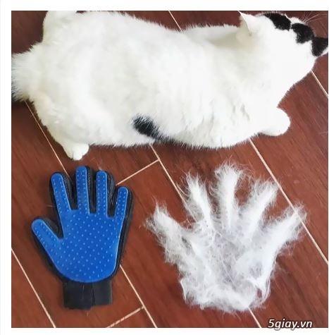 Găng Tay Lấy Lông Rụng Chó Mèo, Găng Tay Tắm Và Chải Lông True Touch - 5