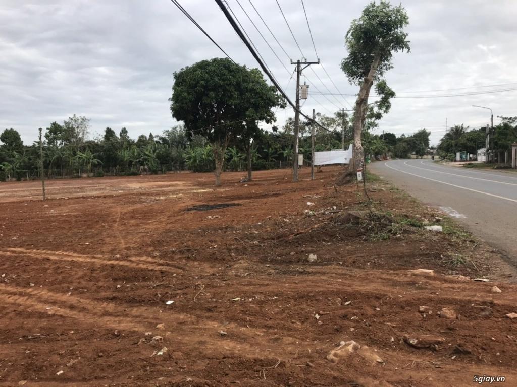 Chính chủ cần bán đất tại xã Bình Ba, cách Quốc Lộ 56 chỉ 50m, giá rẻ - 1