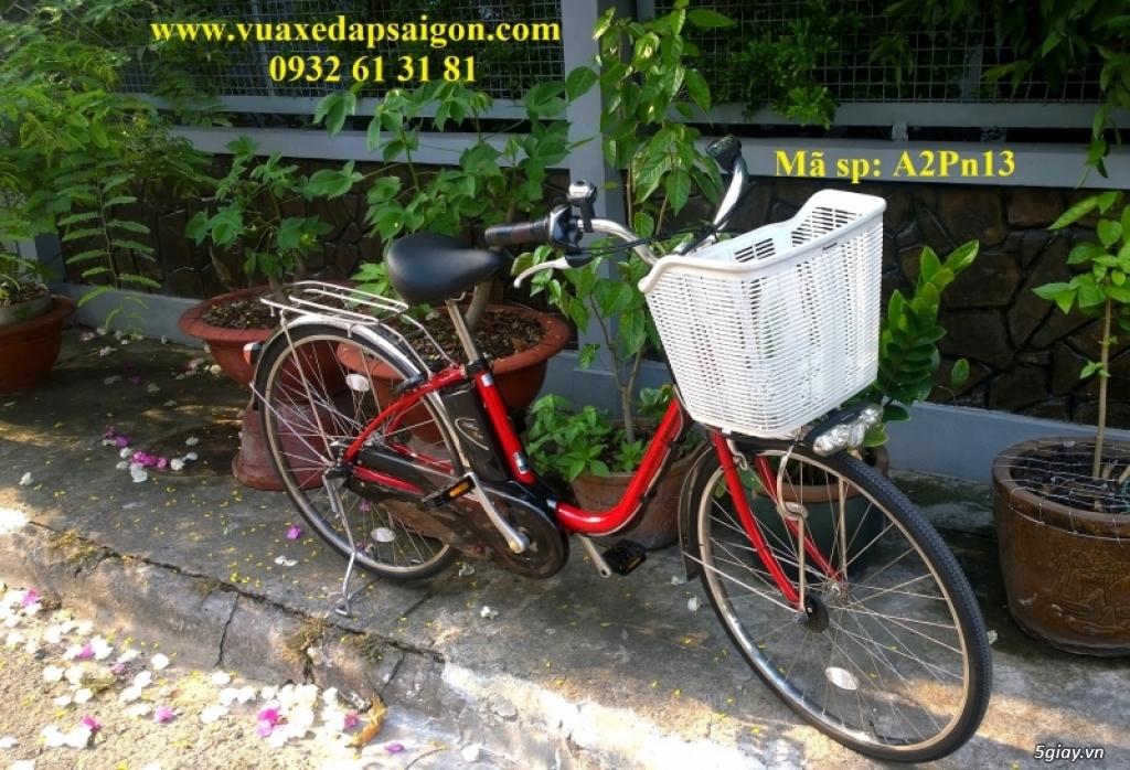 Xe đạp điện trợ lực Nhật Panasonic ViVi DX