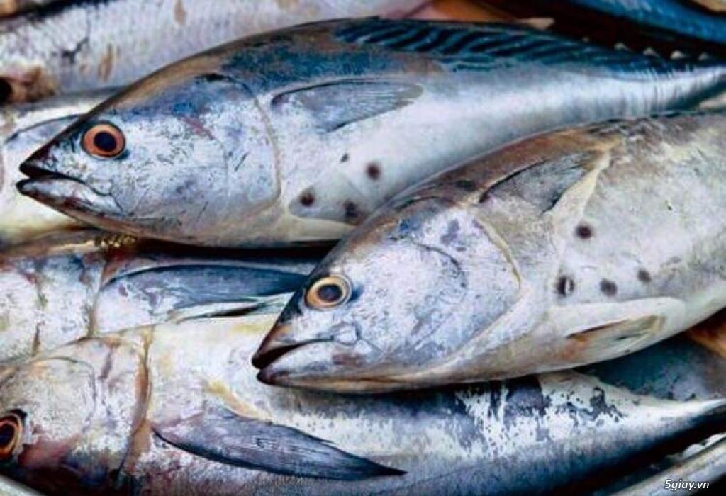 Chuyên Hải Sản Cà Mau: Cua, Tôm, Cá, Hàu, Khô... - 5