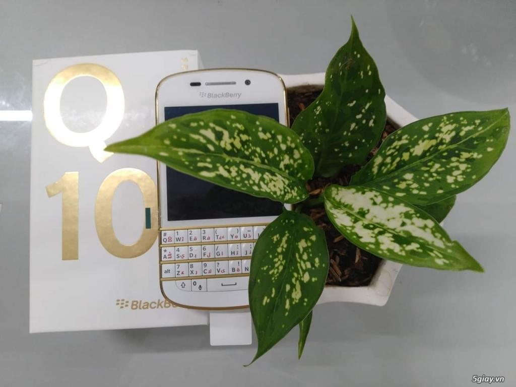 HCM bán Q10 gold brandnew fullbox - 5