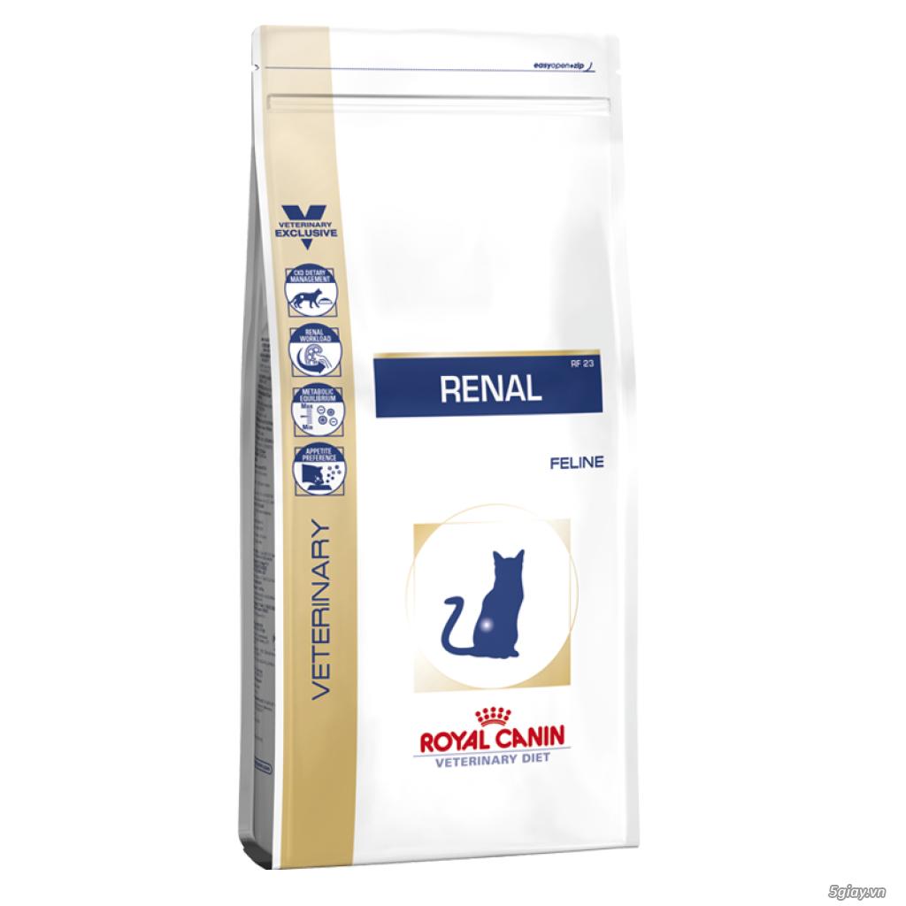 HACHIKO đại lý thức ăn của hãng ROYAL CANIN đến từ PHÁP - 7