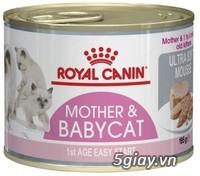 HACHIKO đại lý thức ăn của hãng ROYAL CANIN đến từ PHÁP - 22