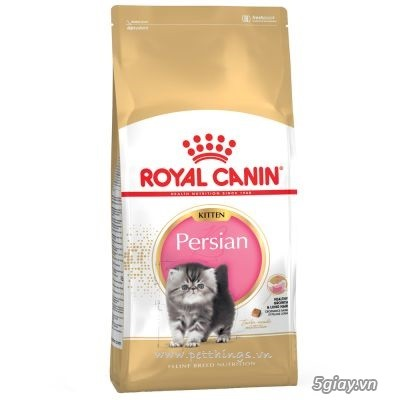 HACHIKO đại lý thức ăn của hãng ROYAL CANIN đến từ PHÁP - 15