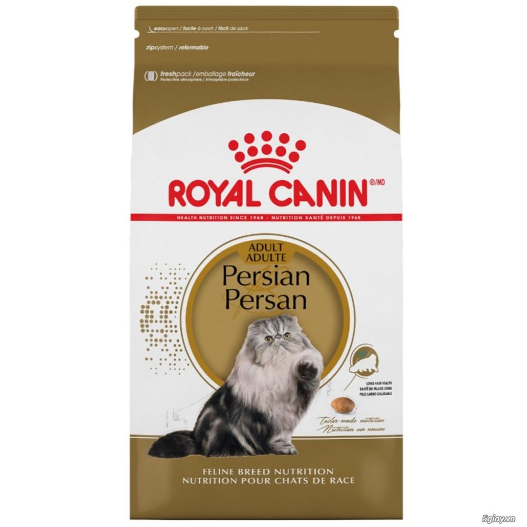 HACHIKO đại lý thức ăn của hãng ROYAL CANIN đến từ PHÁP - 16