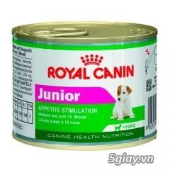 HACHIKO đại lý thức ăn của hãng ROYAL CANIN đến từ PHÁP - 26