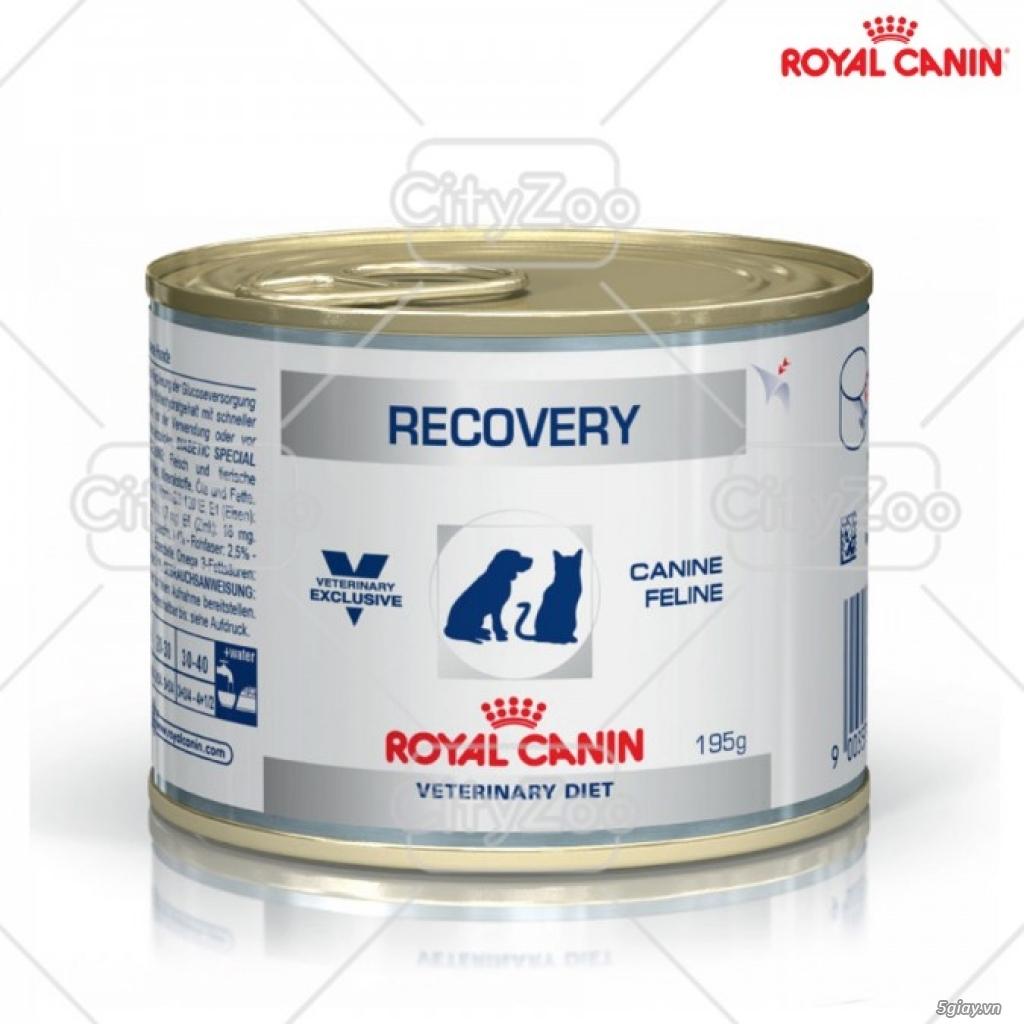 HACHIKO đại lý thức ăn của hãng ROYAL CANIN đến từ PHÁP - 23
