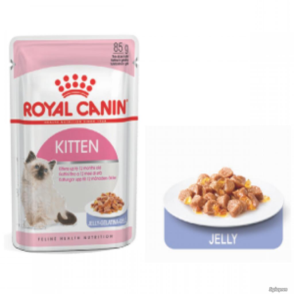 HACHIKO đại lý thức ăn của hãng ROYAL CANIN đến từ PHÁP - 18